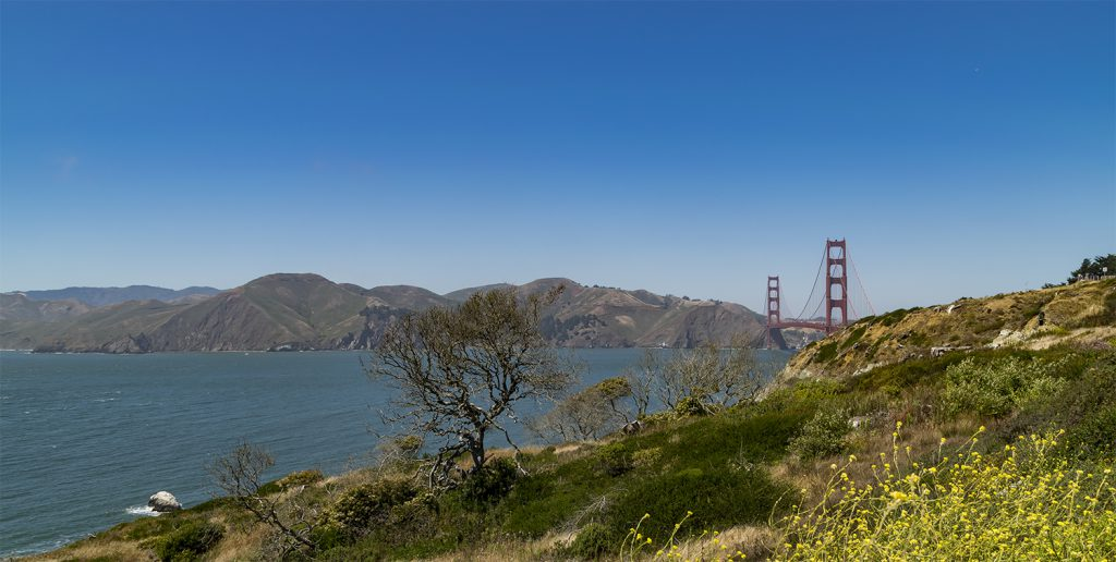 Golden gate7722